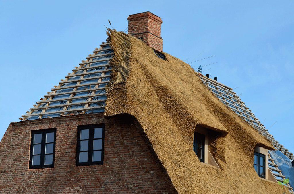 Rietdekkersbedrijf Groningen - Friesland - Drenthe