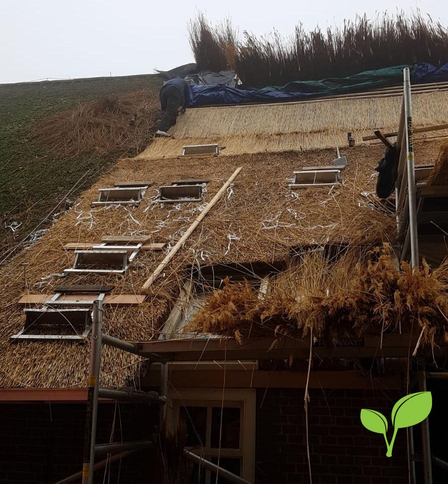 Rietdekkersbedrijf Noord - vernieuwen rieten dak